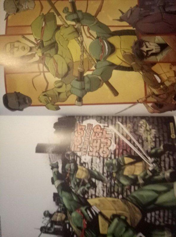 Иллюстрация 11 из 19 для Подростки Мутанты Ниндзя ...