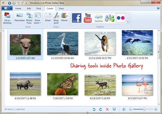 Social Sharing in Photo Gallery