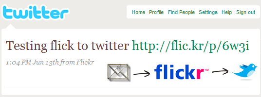 flickr pictures on twitter