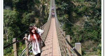 南投天梯 - 溪頭妖怪村2日遊 》從天梯重見台灣山林的美