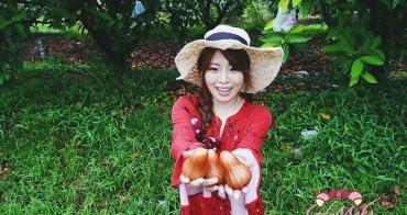泰國羅永果園熱帶水果吃到飽》Suphattra Land沙美島二日遊超好玩行程之一