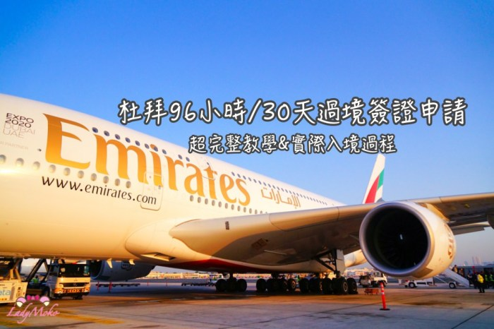 2018最新*杜拜96小時/30天過境簽證Emirates阿聯酋線上申請超完整教學&實際入境過程