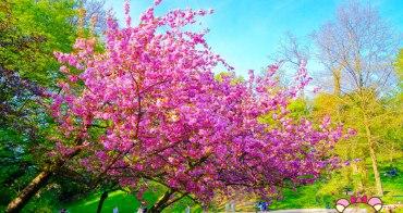 巴黎賞櫻》Parc des Buttes-Chaumont肖蒙山丘公園,19�熱鬧超美綠地公園
