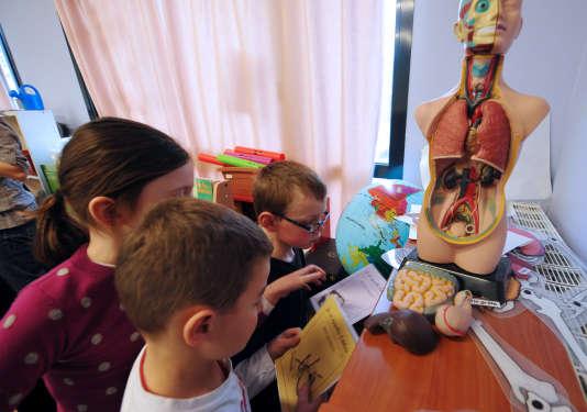 L'épreuve de sciences des bac ES et L aura lieu lundi 19 juin. Ici, des élèves de CE1 travaillant en classe avec un manequin d'anatomie. AFP PHOTO PHILIPPE HUGUEN