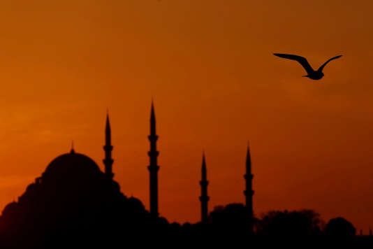A seagull flies over the Bosphorus as the sun sets over the Suleymaniye mosque in Istanbul, Turkey, November 14, 2017. REUTERS/Murad Sezer TPX IMAGES OF THE DAY