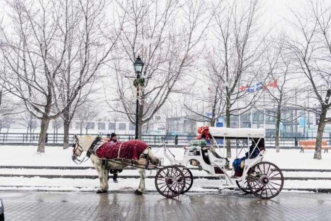 La balade en calèche est une attraction touristique prisée à Montréal