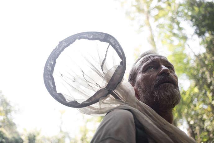 L'entomologiste Philippe Annoyercherche le papillon dans une clairière de la forêt, près de la rivière Lobaye, à Mogoumba, le 5décembre.