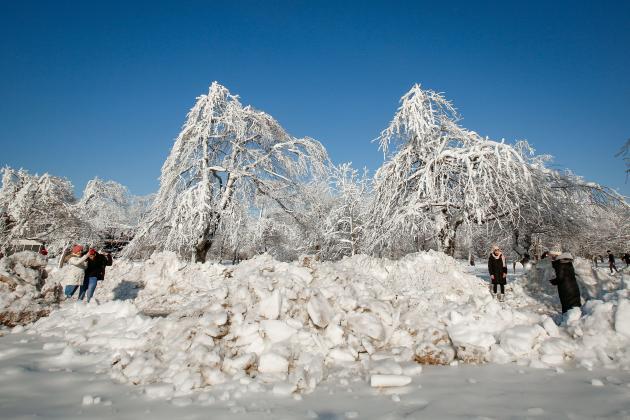 Paysage gelé dans le parc d'Etat de Niagara Falls, aux Etats-Unis, le 21 février 2021.