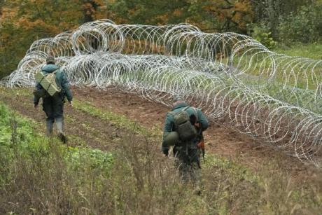 Clôture de fils barbelés à la frontière entre la Biélorussie et la lettonie, le 28 septembre 2021 près de Robeznieki (Lettonie).