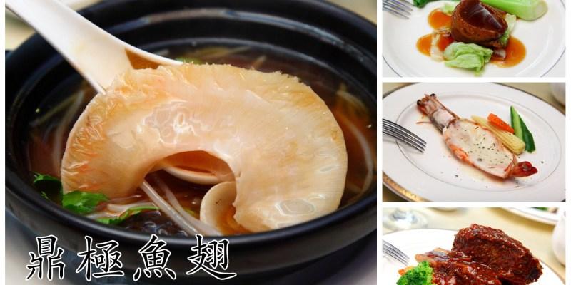 [台北中山]台北魚翅餐廳推薦,魚翅料理不再高不可攀,頂級上湯魚翅套餐買一送一!鼎極魚翅