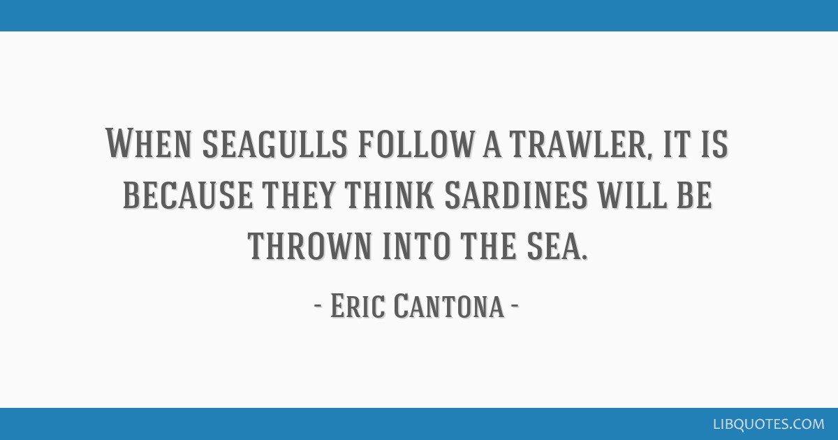 Classic eric cantona quote, recreated as a simplistic. When Seagulls Follow A Trawler It Is Because They Think Sardines Will Be Thrown Into The