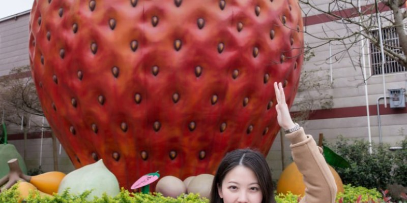 大湖景點推薦》草莓文化館 - 創意草莓美食