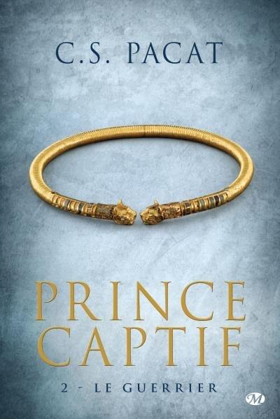 Couverture Prince captif, tome 2 : Le guerrier