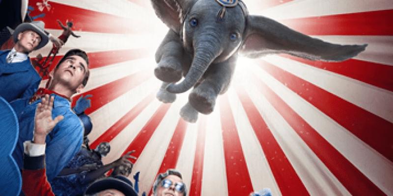 【無雷影評】《小飛象》如何突顯小象的可愛