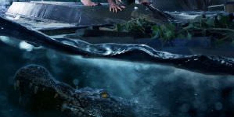 【影評】《鱷魔》兩種災難一次滿足?