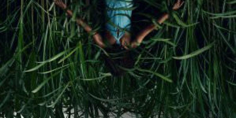 【影評解析】《高草魅聲》無所不在的邪惡誘惑