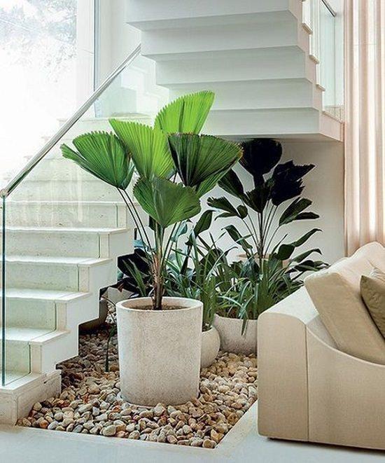15 Unique Ideas For Indoor Garden Under Stairs Andy Garden | Under Stair Garden Design | Plant | Ideas | House | Stair Case | Pebble Garden