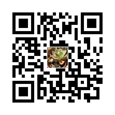 多肉-德雷成長記 - 綠手指 - 最專業的養花APP