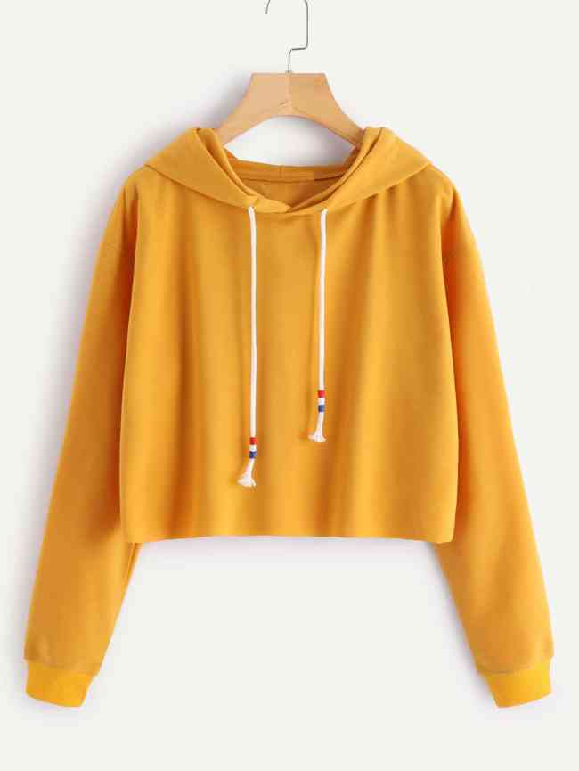 SheIn Hooded Drawstring Basic Sweatshirt