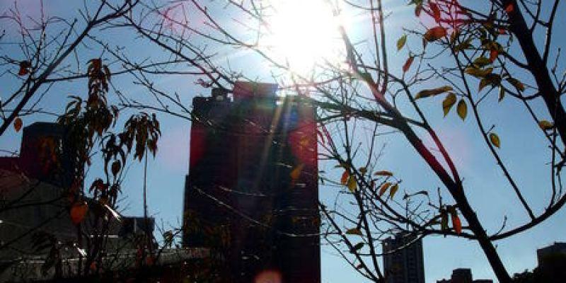 台中西屯景點|稀迷的落羽松觀賞記@秋紅谷