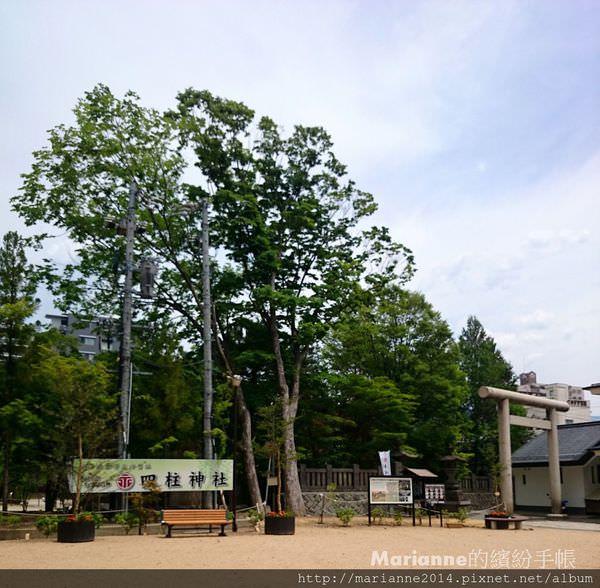 日本北陸自助|長野松本-四柱神社與縄手通(青蛙街)