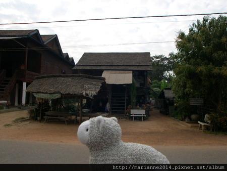 柬埔寨景點|吳哥窟洞里薩湖水上人家的小羊兒