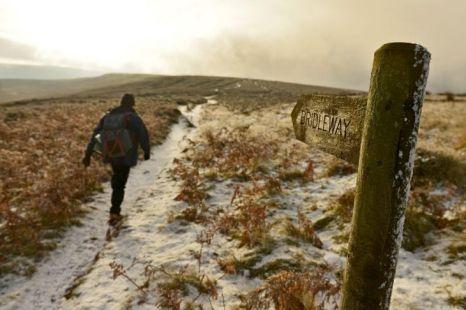 snow, weather, white Christmas