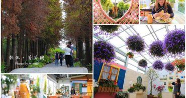 【彰化景點】菁芳園:全新夢幻玻璃花房咖啡廳,落羽松、海豚草組成的美好景緻,IG打卡熱點。