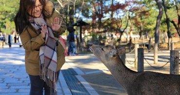 【奈良一日遊】大阪怎麼去奈良?搭乘近鐵奈良前往奈良東大寺、春日大社,買鹿仙貝餵小鹿好好玩