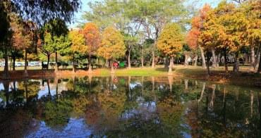 【台南景點】巴克禮紀念公園:冬天落羽松最美,充滿秋冬氣息的自然風情