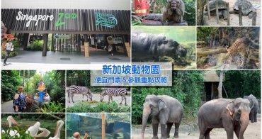 【新加坡動物園】便宜門票&參觀重點攻略:動物自然接觸,還能餵大象、犀牛和長頸鹿