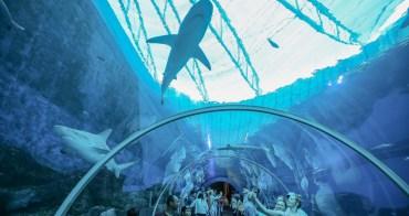 【新加坡】聖淘沙SEA海洋館攻略:便宜門票&遊玩時間建議,全世界最大水族館躲太陽