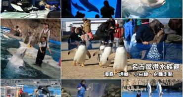 【名古屋景點】名古屋港水族館:海豚虎鯨小白鯨超可愛,看企鵝走路好療癒,玩整天也沒問題。