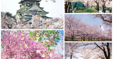 2018大阪賞櫻景點推薦,大阪賞櫻自由行行程景點
