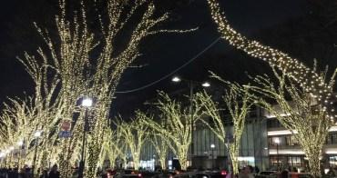 [東京聖誕節]表參道櫸木大道燈飾,50萬顆燈泡的夢幻閃亮表參道