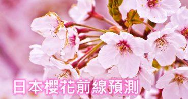 2019東京櫻花前線情報預測(2/14更新)~東京櫻花季開花滿開時間