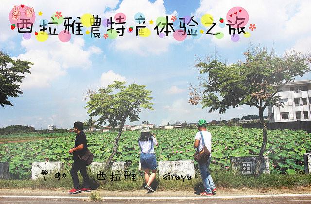 台南自由行 | 西拉雅農特產體驗之旅 i 購西拉雅 與我們一起沉浸在西拉雅的故事中 體驗最在地的農作吧!