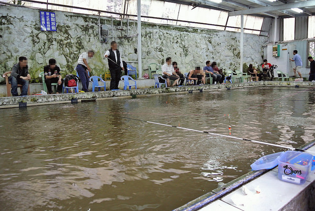 台北士林釣蝦   車輪釣蝦場 上陽明山釣蝦去