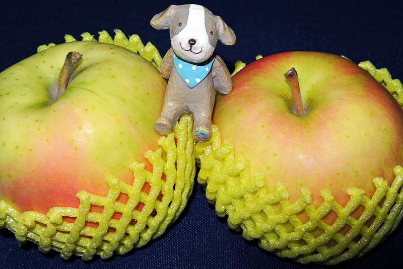 團購美食 | 鮮果日誌 注目新品種 青森空運朱鷺蘋果初體驗
