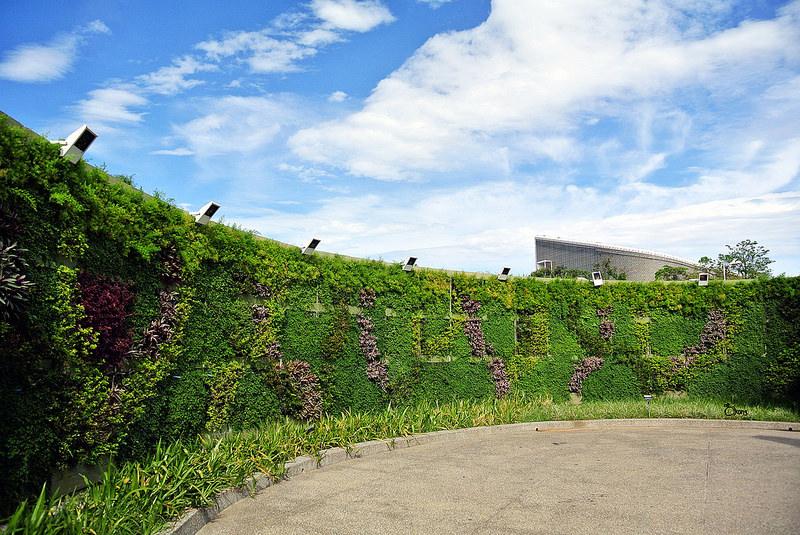 捷運圓山站景點 | 花博圓山園區 近距離賞飛機好吸睛