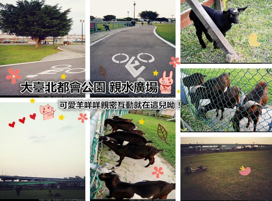 新北三重景點   大臺北都會公園 親水廣場 與羊咩咩的親密互動