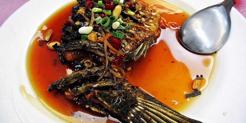 桃園龍潭美食 | 金蘭活魚 1968創意美食 石門活魚第一家