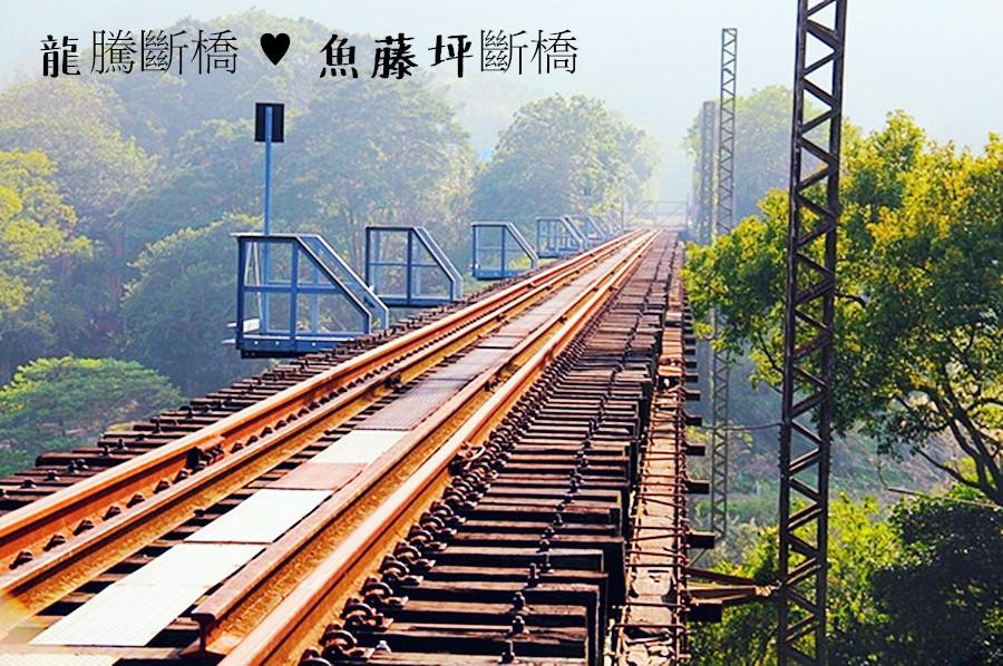 苗栗三義景點 龍騰斷橋 魚藤坪斷橋 雖遭受912大地震的摧殘 卻成為了台灣鐵路藝術極品