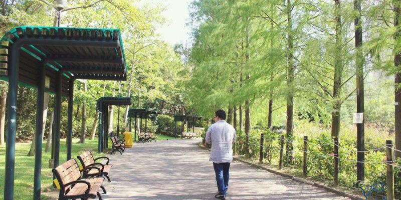 香港葵青景點 | 青衣公園 TSING YI PARK 歐陸式設計 運動 兒童遊樂區 野餐 登山健行 餐廳 球場 親子同遊的大公園 青衣市中心 港鐵青衣站
