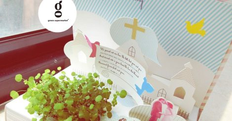 什麼!!! 書裡會長出植物 ? 卡片裡也會長出植物 ?