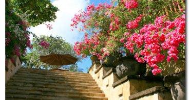 ★巴里島★享樂行,巴里島旅遊重點