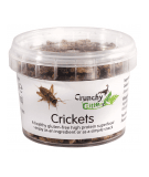 CRUNCHY CRITTERS Crickets 20g
