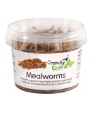 CRUNCHY CRITTERS Mealworms 20g