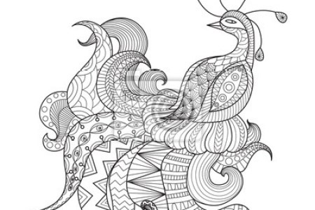 best Pavo Real Dibujo A Lapiz image collection