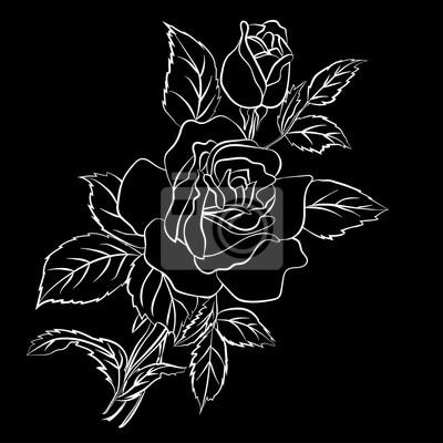 croquis de rose blanche sur fond noir images myloview